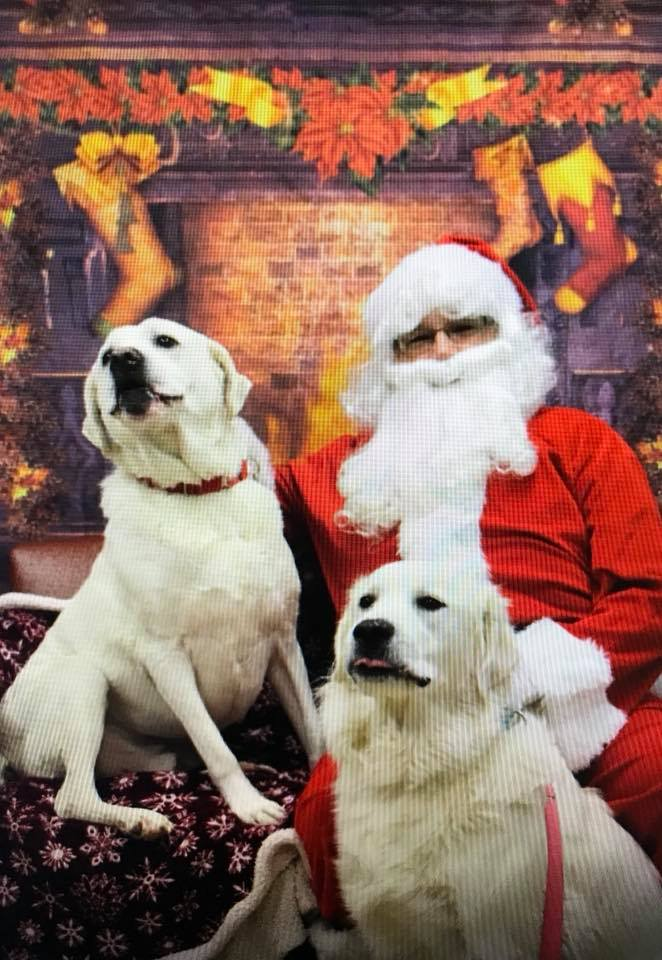 Events in Erie, PA | Animal Ark Pet Hospital, Inc